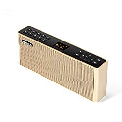 Bluetooth Speakers with FM Radio&MP3/TFCard/USB Player,USB Charge,AUX Input, Stereo Portable Wireless Speaker Dual Drivers with HD Sound, Built-in Microphone Support Hands-Free Calls (Color:Gold)