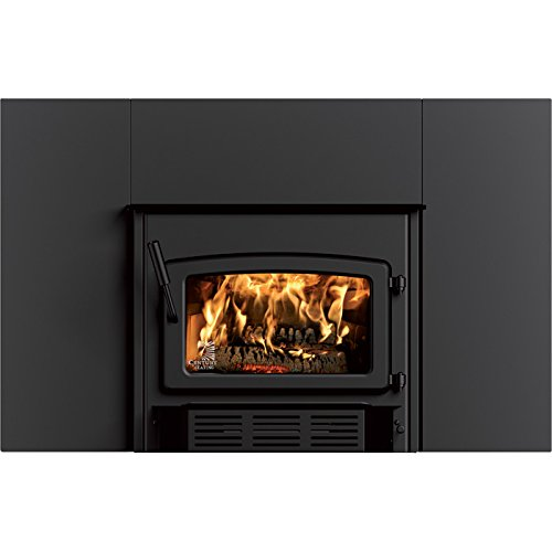 Stove Builder International CW2900 Century High Efficiency Wood Insert (Burning Fireplace Blower Wood)