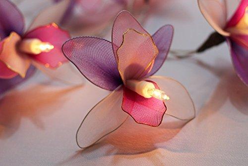 GaanZaLive36 Thai Handmade 20 Romantic Orchid Handmade Flower Fairy String Lights Patio Wedding Party Vanity Kid Wall Lamp Floral Home Decor 3m (Pink (Cute Betty Boop Halloween Costumes)