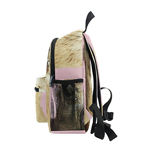 nbsp;Book nbsp;for nbsp;Bag ZZKKO Kids nbsp;Toddler Alpaca Animal nbsp;Backpack Boys nbsp;Girls nbsp;School CxwRBqX