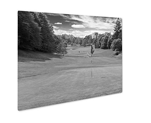 Ashley Giclee Golf Field European Landscape, Wall Art Photo Print On Metal Panel, Black & White, 24x30, Floating Frame, AG4946797