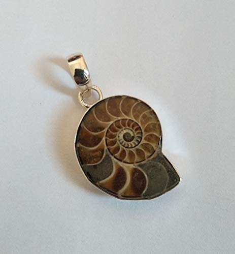 Ammonite Pendant, 925 Silver, Fossil Pendant, Gift For Teenager, Snail Pendant, Jurassic Jewelry, Archaeologist Gift, Beach Pendant, Ocean Pendant, Fossil Shell Pendant, Boho Chic, Love Days -