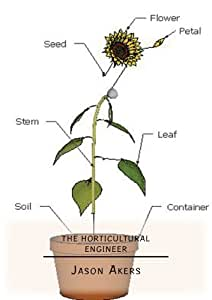 The Horticultural Engineer