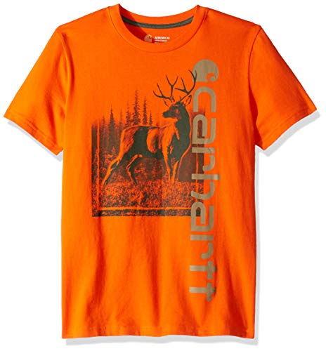 Carhartt Baby Boys Short Sleeve Cotton Graphic Tee T-Shirt, Vertical Blaze Orange, - Baby T-shirt Tee