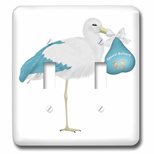 Stork Gift Delivery (3dRose Anne Marie Baugh - Illustrations - Cute Blue and White Stork Carrying A Baby Illustration - Light Switch Covers - double toggle switch (lsp_267675_2))