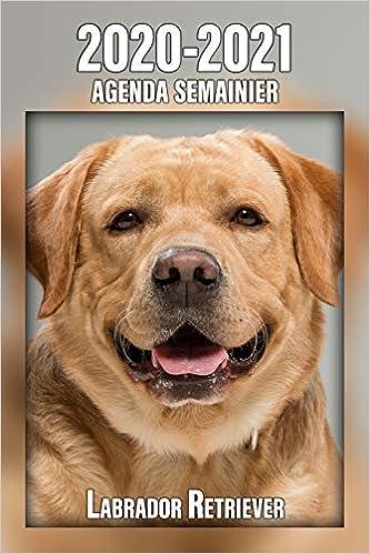 2020-2021 Agenda Semainier Labrador Retriever: A5, 221 Pages ...