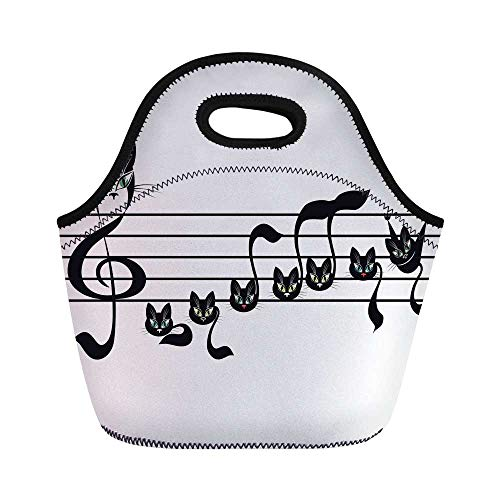 Music Decor Durable Lunch Bag,Notes Kittens Kitty Cat