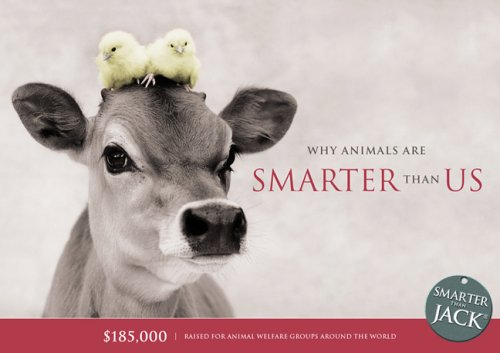 Why Animals Are Smarter Than Us (Smarter Than Jack) pdf