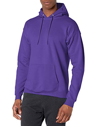 Image of Hanes Men's Pullover Ecosmart Fleece Hooded Sweatshirt, purple, 4X Large