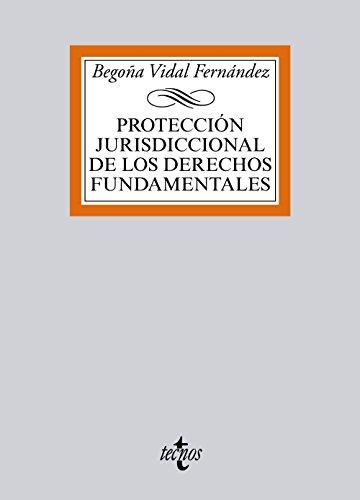 Descargar Libro Protección Jurisdiccional De Los Derechos Fundamentales Begoña Vidal Fernández