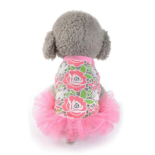 20s Costume Rental (Hihihappy Lovely Dress,Hot Sale!2017 Dog Cat Floral Lace Mesh Skirt Princess Dress for Small Dogs Costume RedL)