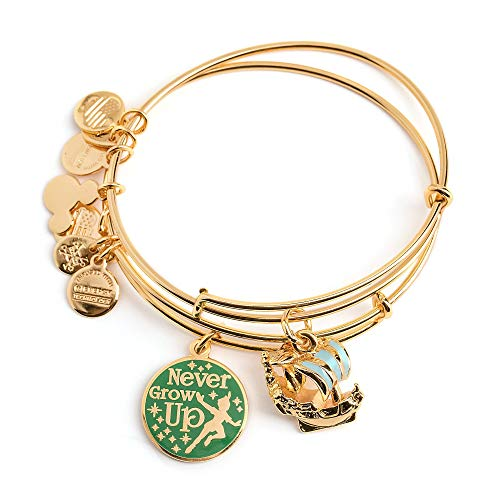 Disney Parks Alex & ANI Peter Pan Bangle Bracelet Set