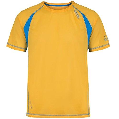 Hunter T Regatta shirt T Ii hydra Gold Volito Homme Blue gq6qwSx0t