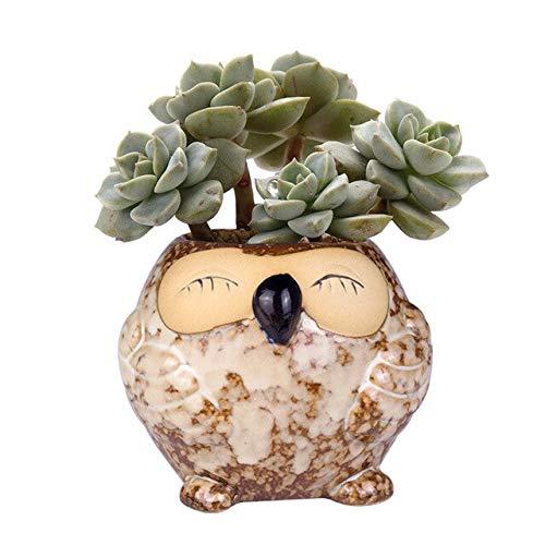 New Owl Shape Flower Pots Plant Animal Style Colorful Glazed Ceramic Smiling Owl Vase Desk DIY Gardening Succulent Plant Pot - (Color: Type 5, Sheet Size: Ship from US to - Smiling Owl