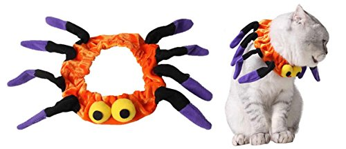 Spider Cat Costume Pet Holiday Accessories for Halloween Kitten Collar Orange,8