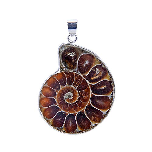 THETASTEJEWELRY 42x34mm Pair Ammonite Fossil Pendant Crystal Energy Natural Stone Healing Power for Jewelry Making Supplies ()