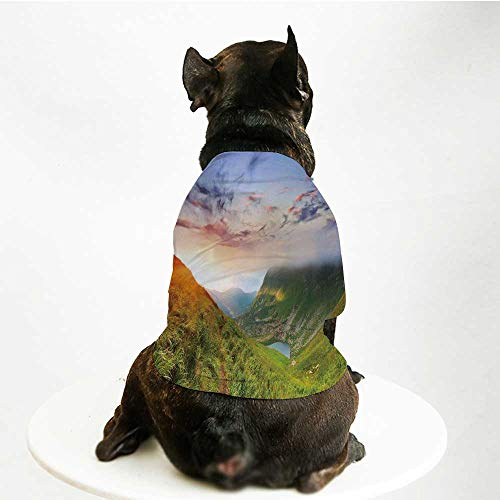 - YOLIYANA Mountain Fashion Pet Suit,Majestic Sunrise in Hills Mottled Clouds Fresh Grass Serenity Morning Mist for Cats and Dogs,M