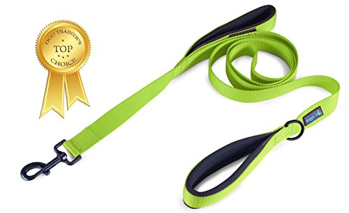 (Waggin Tails Soft &Thick Dual Handle Dog Leash, Premium Nylon Double Padded Handles 6FT Length for Medium, Large or XLarge Dog Classic Comfort (Neon Green))