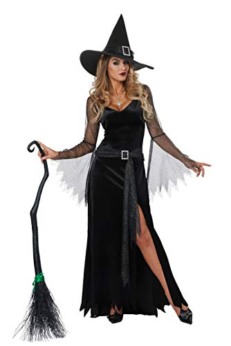 California Costumes Women's Rich Witch Adult Woman Costume, Black/Silver, Small]()