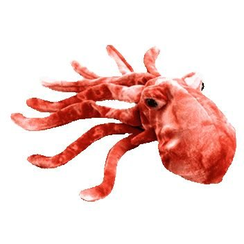 a193f7dae08 Image Unavailable. Image not available for. Color  Ty Beanie Babies - Wiggly  the Squid