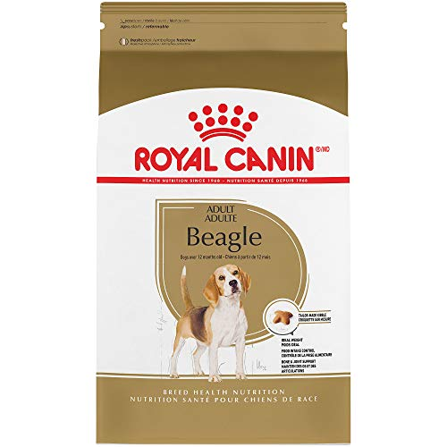 Royal Canin Breed Health Nutrition Beagle Adult Dry Dog Food, 30-Pound