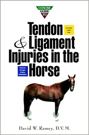 Concise Guide To Tendon And Ligament Injuries In The Horse Howell Equestrian Library Ramey David W 0785555059603 Amazon Com Books