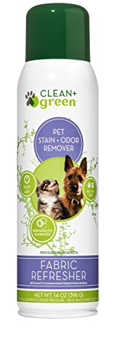 Professional Strength Fabric Refresher Pet Stain Remover, Deodorizer, Odor Eliminator for Dogs and Cats, 14 -