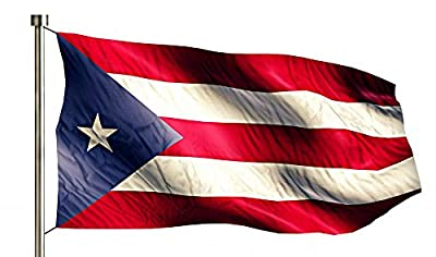 Puerto Rico National Flag Wall Decal by Wallmonkeys Peel and Stick Graphic WM147471