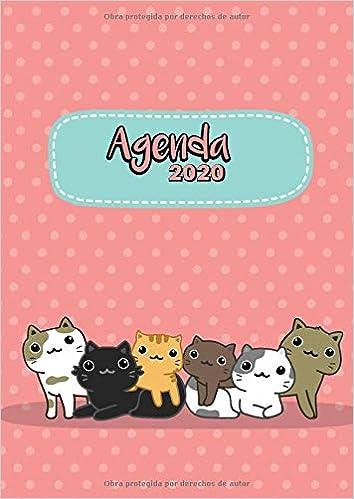 Agenda 2020: Tema Gatos Kawaii Rosa Agenda Mensual y ...