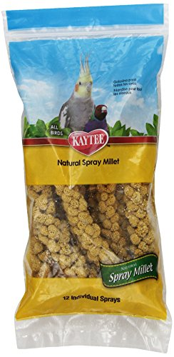 Kaytee Spray Millet for Birds, 12-Count (Spray Millet compare prices)