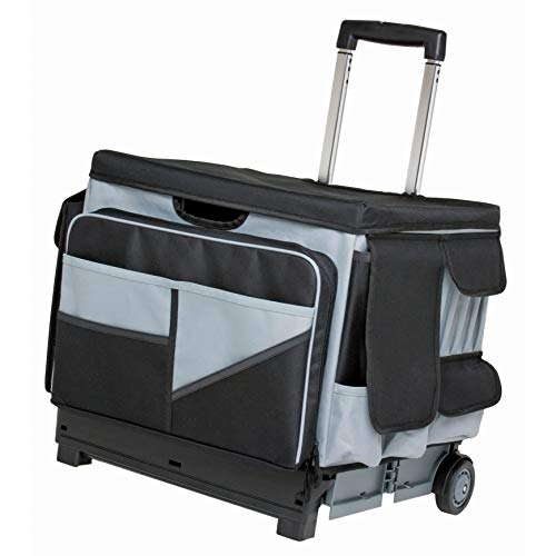 ECR4Kids MemoryStor Universal Rolling Cart and Organizer Bag Set, -