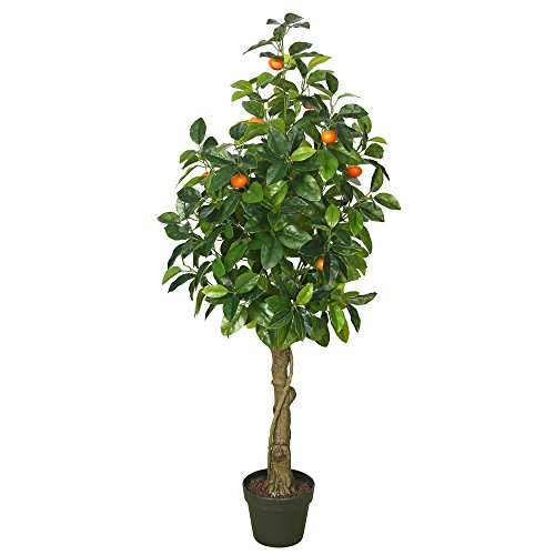 Vickerman TA171201 Flowering Orange Tree