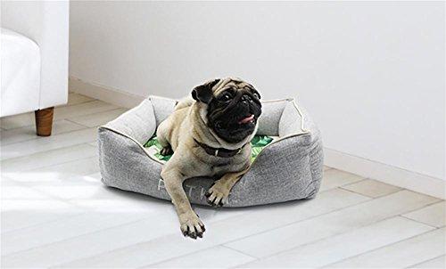 AnGe Cama para Perro, Cama para Gato, Perro Sofa, Fácil limpieza: Amazon.es: Deportes y aire libre