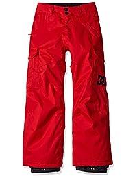 DC Big Boys' Banshee Youth Snow Pant