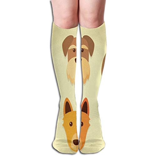 Socks Dogs Sets Fantastic Womens Stocking Party Sock Clearance for Girls