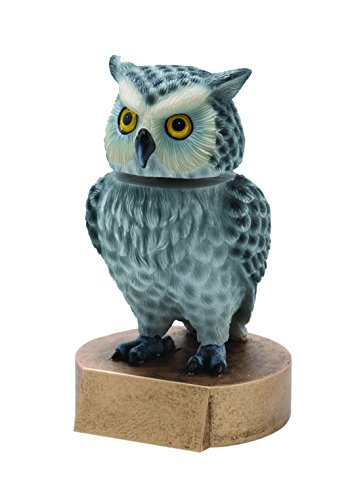 Decade Awards Owl Bobblehead Mascot Trophy | Owl Award | 6 Inch Tall - Customize Now
