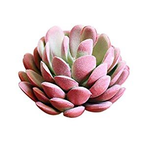 MARJON FlowersArtificial Beautiful Fake Succulent Plants Lotus Home Office Cafe Decoration Wedding Porch Decor Pink 71