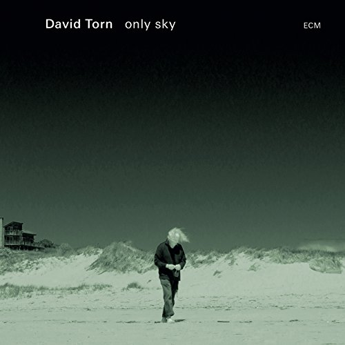 David Torn - Only Sky - Amazon.com Music