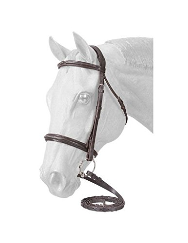 Raised Bridle Padded (EquiRoyal Premium Padded Fancy Stitched Raised English Bridle - Brown)