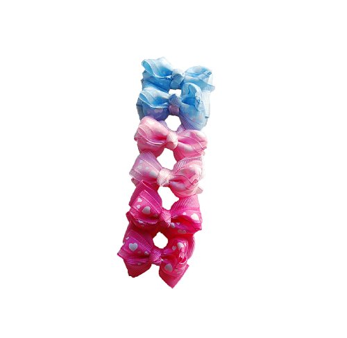 Assorted Dog Grooming - 7