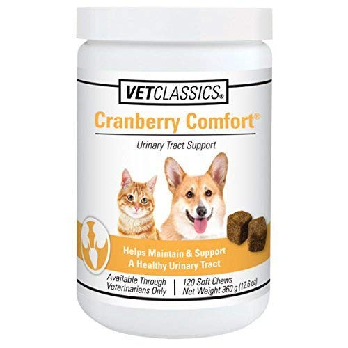 Vet Classics Cranberry Comfort Urinary Tract Support for Dogs and Cats, 120 Soft Chews (Best Dog Food For Pembroke Welsh Corgi)