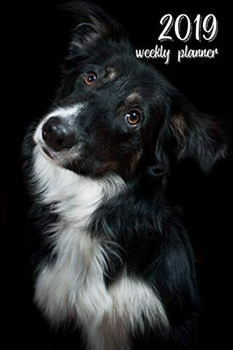 2019 Weekly Planner: 6x9 in. Border Collie 52 Weekly  Calendar Schedule Organizer Appointment Journal Notebook for Scottish Sheepdog fans