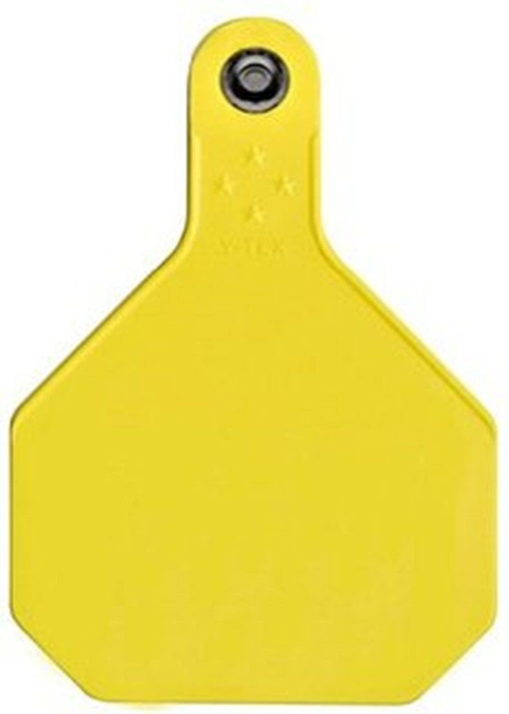 Ear Tags Yellow Large Blank 25/Pk