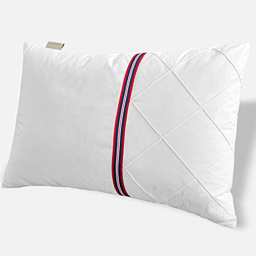 TEFOTO British Style Bed Pillow for Sleeping Polyester Filled Pillow with Cotton Pillowcase Queen Size (Bed Pillow Single)