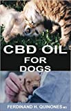 CBD OIL FOR DOGS: A COMPLETE GUIDE ON HOW TO USE