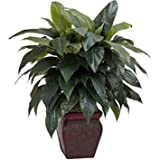Natural Beauty With Large Green Leaves Cordyline with Decorative Vase Silk Plant, Green
