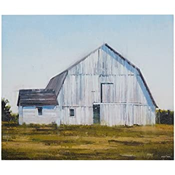 Madison Park, Old White Barn Wall Art Vintage Gel Coated Canvas, Modern Antique Design, Global Inspired Farmhouse Painting Living Room Accent Décor, Multi, 20 x 24