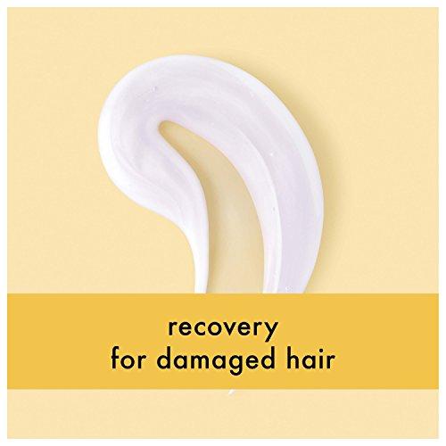 Love Planet Shampoo and Conditioner, Coconut Oil & 13.5