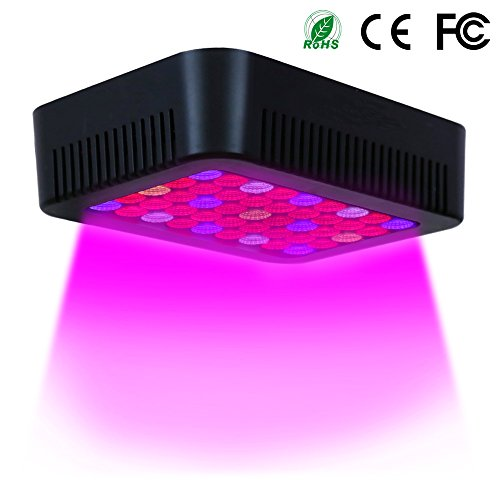 Led Lighting Systems For Indoor Growing in Florida - 7