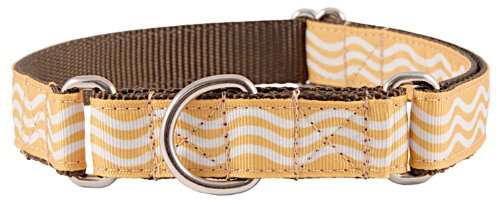 Country Brook Design Gold Wave Grosgrain Ribbon Martingale Dog Collar - Extra Large
